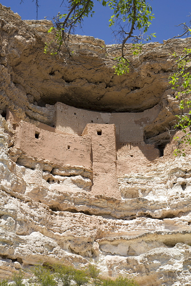 Cliff dwelling of Southern Sinagua farmers, built in the early 1100s CE (Common Era), a five storey, 20 room structure, Montezuma Castle National Monument, Arizona, United States of America, North America