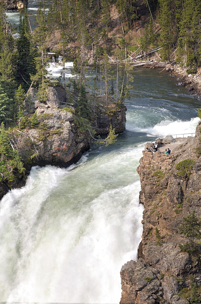 Upper Falls, Yellowstone River, Yellowstone National Park, UNESCO World Heritage Site, Wyoming, United States of America, North America