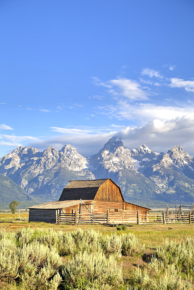 John Moulton Homestead, Barn dating from the 1890s, Mormon Row, Grand Teton National Park, Wyoming, United States of America, North America
