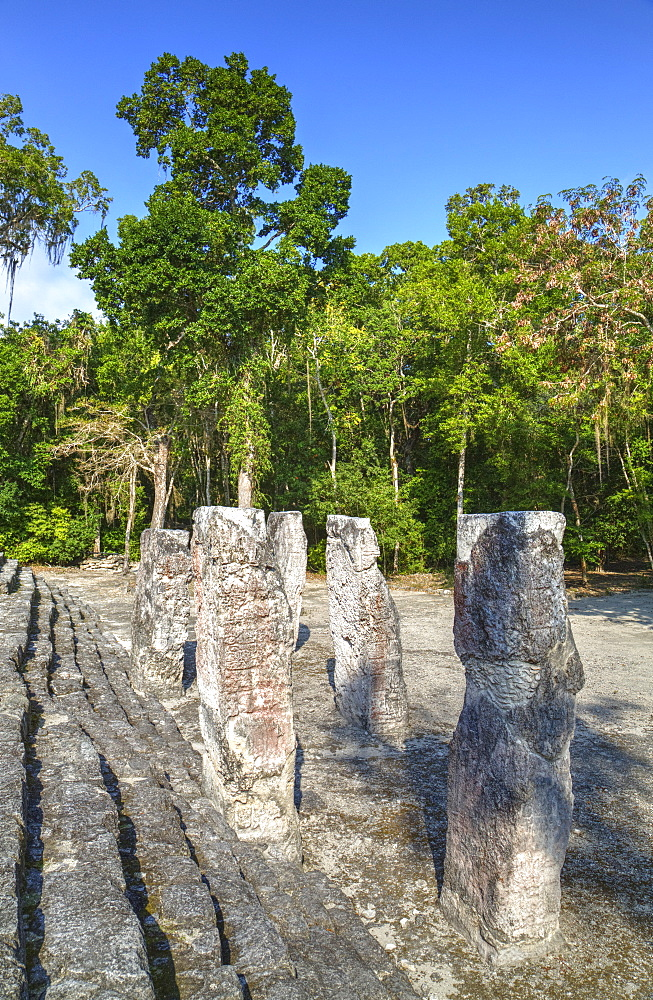 Stelae in front of Structure 2, Calakmul Mayan Archaeological Site, UNESCO World Heritage Site, Campeche, Mexico, North America