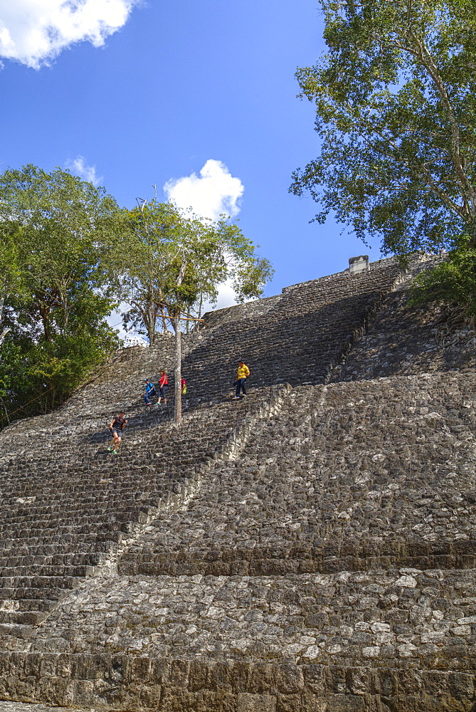 Structure 1, Calakmul Mayan Archaeological Site, UNESCO World Heritage Site, Campeche, Mexico, North America