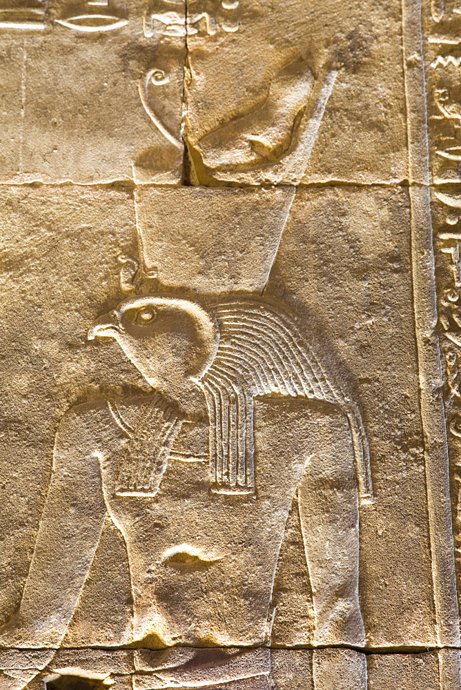 Relief of the God Horus, Temple of Horus, Edfu, Egypt, North Africa, Africa