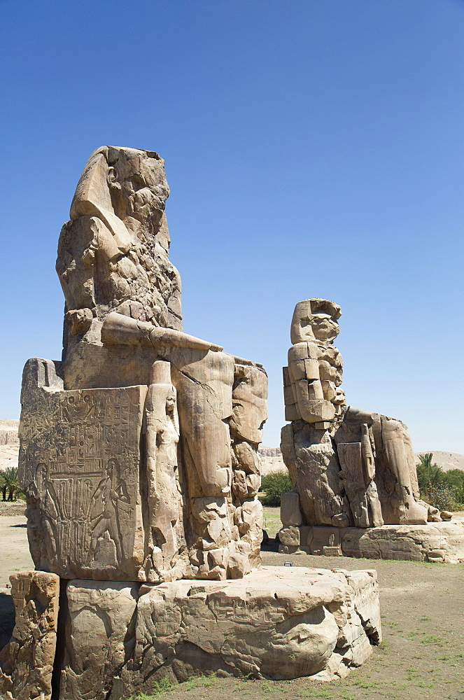 Colossi of Memnon, West Bank, Thebes, UNESCO World Heritage Site, Egypt, North Africa, Africa
