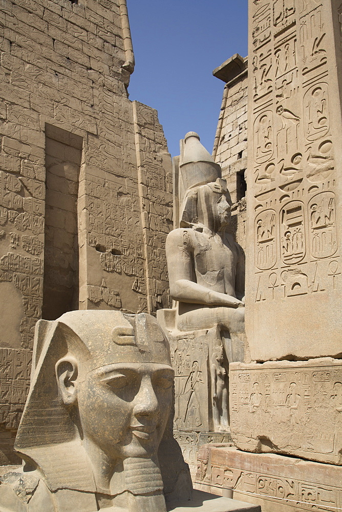 Head of Ramses II in foreground and Colosssus of Ramses II behind, Luxor Temple, Luxor, Thebes, UNESCO World Heritage Site, Egypt, North Africa, Africa