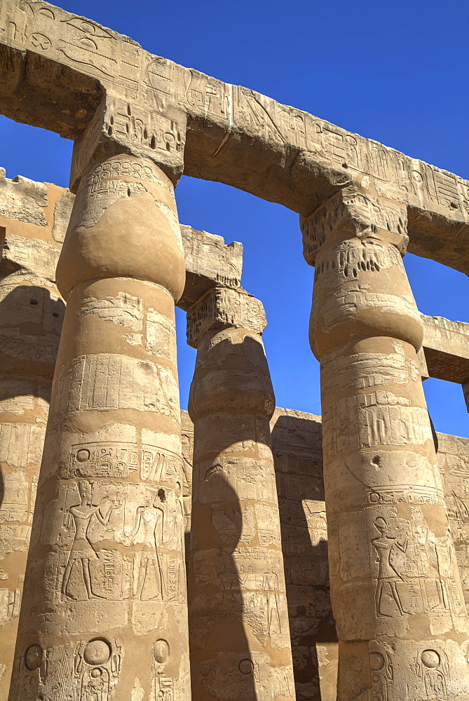 Columns in the Court of Ramses II, Luxor Temple, Luxor, Thebes, UNESCO World Heritage Site, Egypt, North Africa, Africa