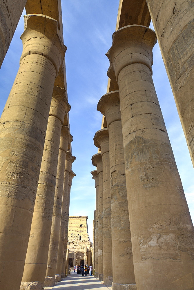 The Colonnade of Amenhotep III, Luxor Temple, Luxor, Thebes, UNESCO World Heritage Site, Egypt, North Africa, Africa