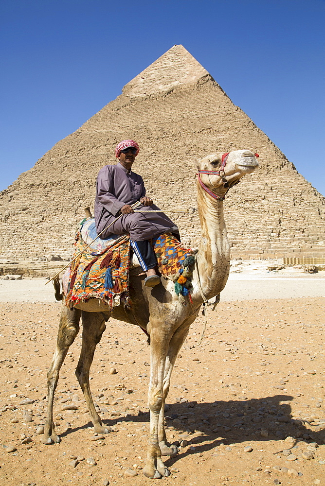 Local man on camel in front of the Pyramid of Chephren, The Giza Pyramids, UNESCO World Heritage Site, Giza, near Cairo, Egypt, North Africa, Africa