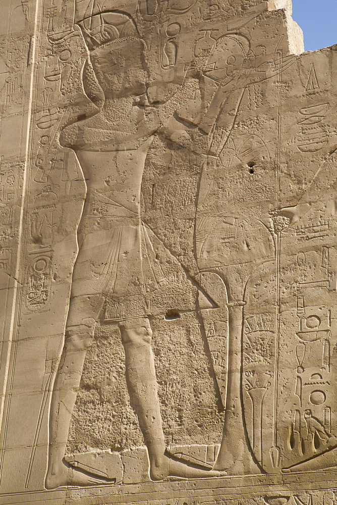 Bas-relief of figures and hieroglyphs, Karnak Temple, Luxor, Thebes, UNESCO World Heritage Site, Egypt, North Africa, Africa