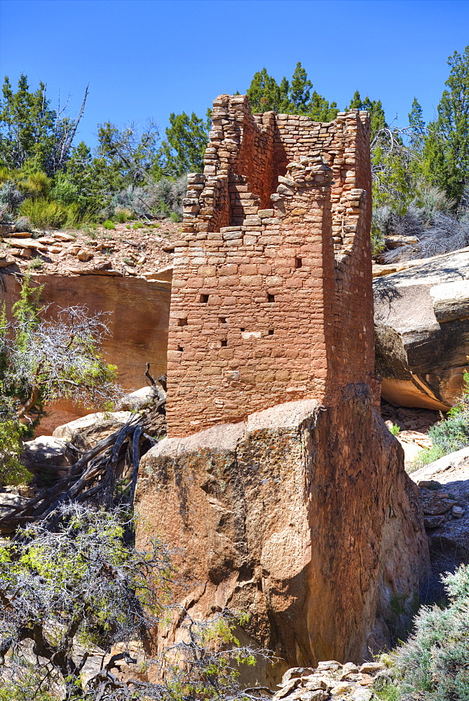 Ruins of Ancestral Puebloans, Square Tower, dating from between 900 AD and 1200 AD, Holly Group, Hovenweep National Monument, Utah, United States of America, North America
