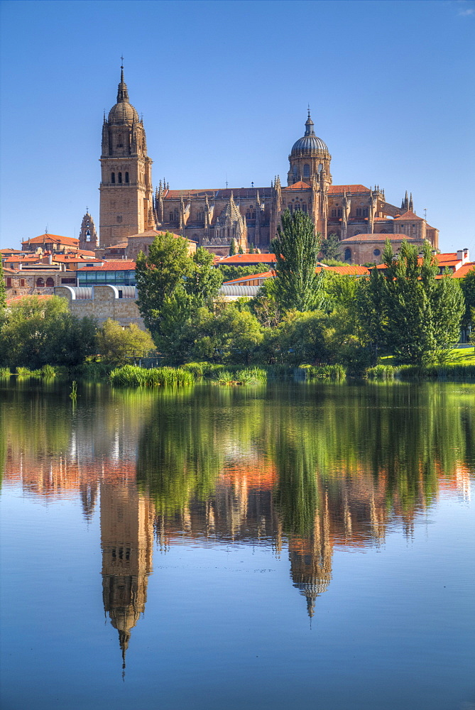 Water reflection, Cathedral Of Salamanca, Salamanca, UNESCO World Heritage Site, Castile y Leon, Spain, Europe