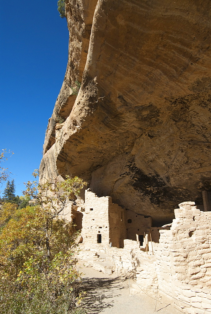 Mesa Verde National Park, Spruce Tree House, UNESCO World Heritage Site, Colorado, United States of America, North America