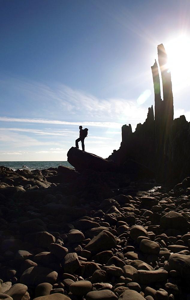 A walker stands on a boulder beside the isolated Bear Rock, a Culm pinnacle near Hartland Quay, Culm Coast, North Devon, England, United Kingdom, Europe