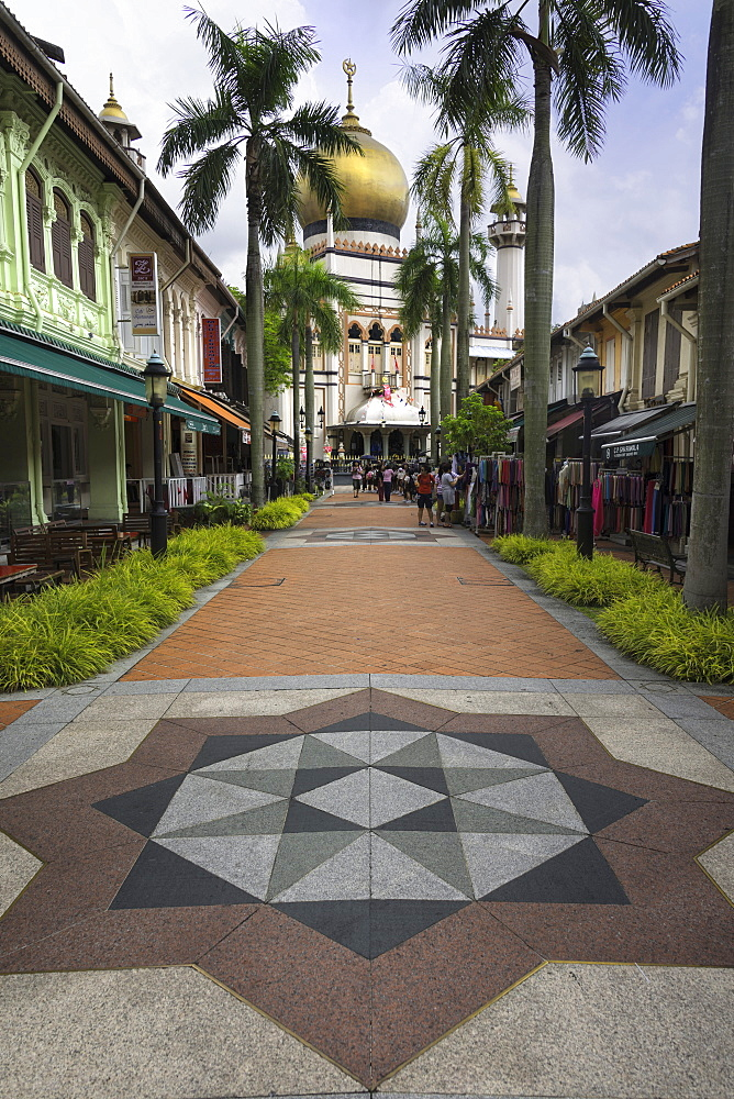 Road leading to the Sultan Mosque in the Arab Quarter, Singapore, Southeast Asia, Asia - 803-226