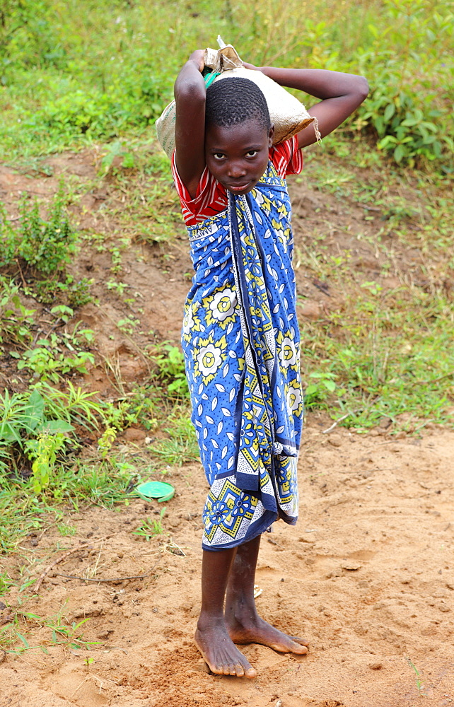 Young girl, Kenya, East Africa, Africa - 806-332