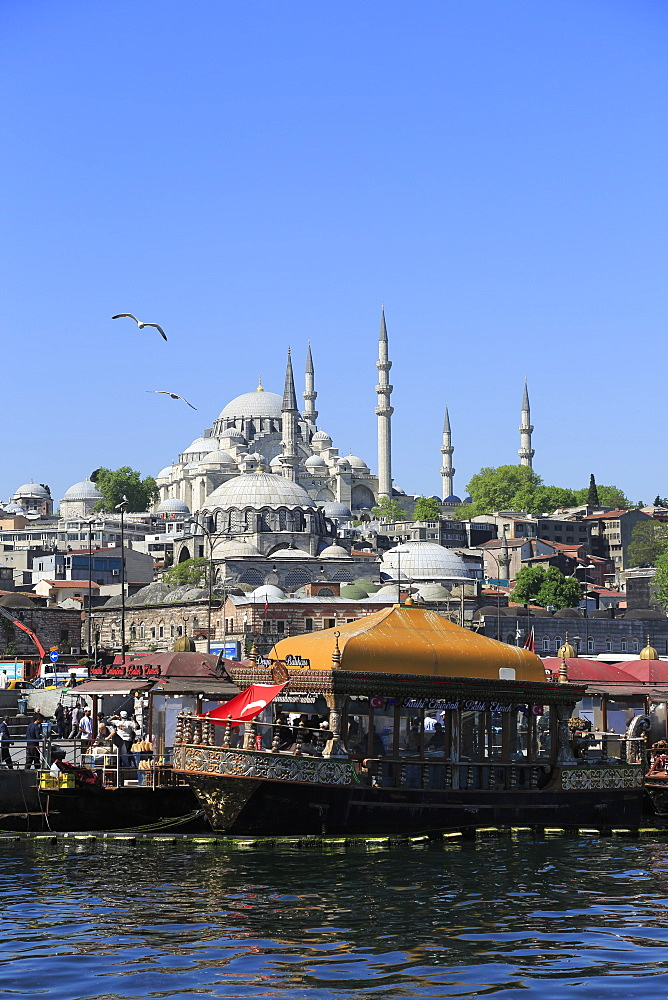 Old City, Suleymaniye Mosque, Eminonu, Golden Horn, Bosphorus, Istanbul, Turkey, Europe