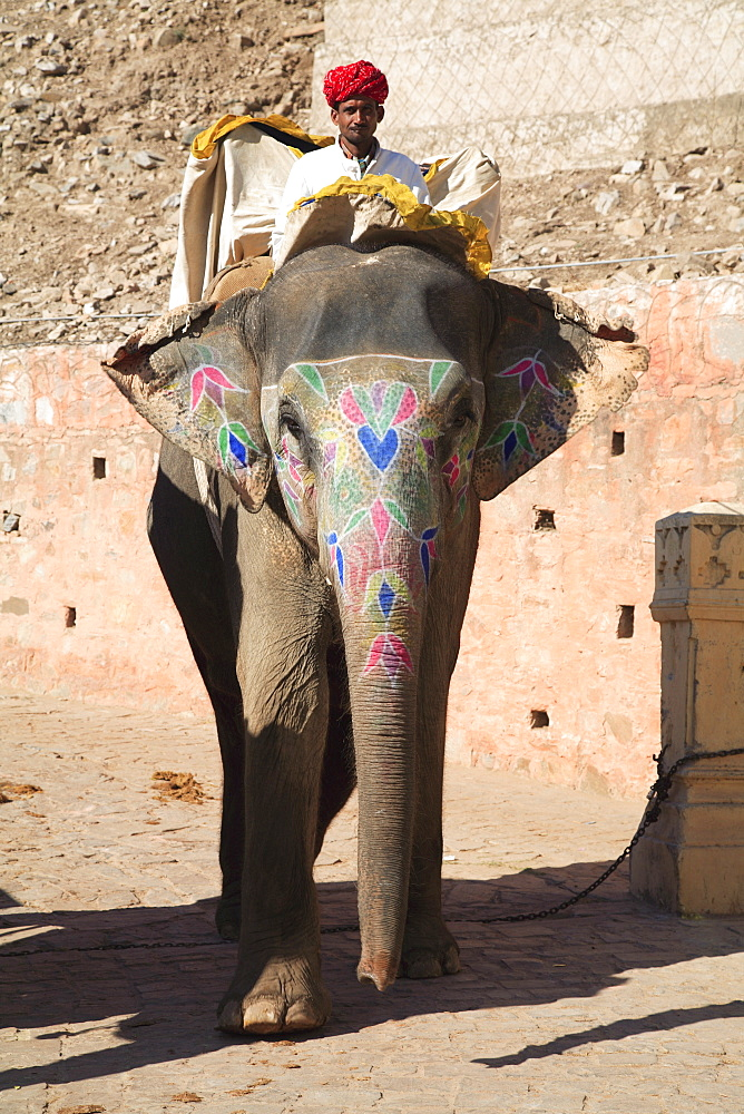 Mahout and elephant, Amber Fort Palace, Jaipur, Rajasthan, India, Asia