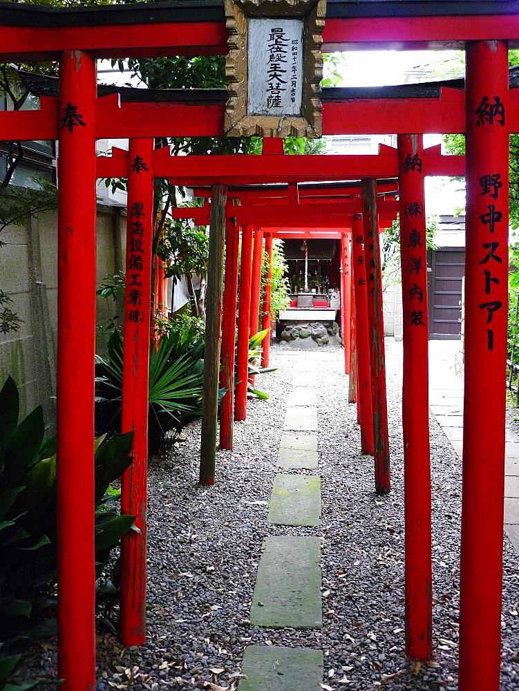 Torii shrine gates, Kyoto, Japan, Asia