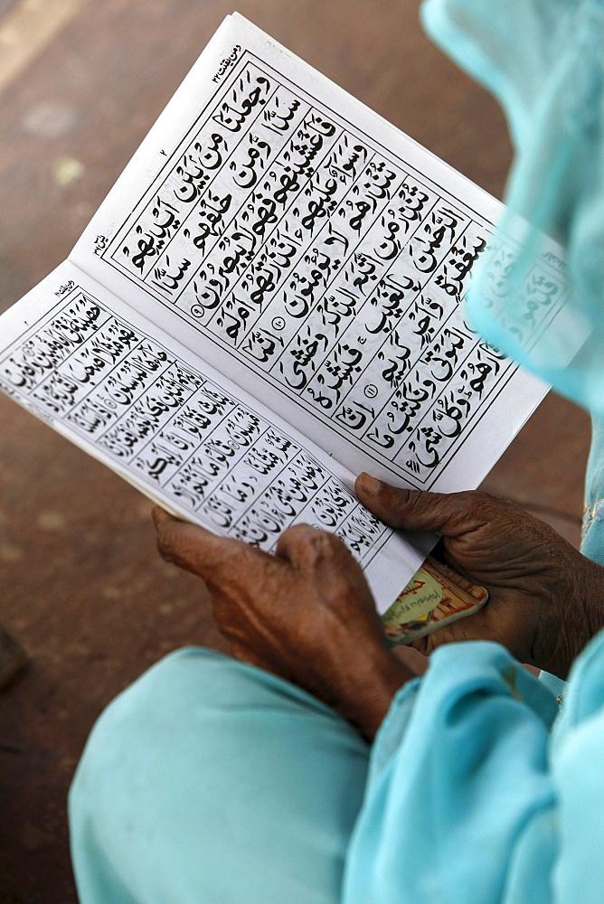 Women reading at Jamma Masjid (Delhi Great Mosque), Delhi, India, Asia