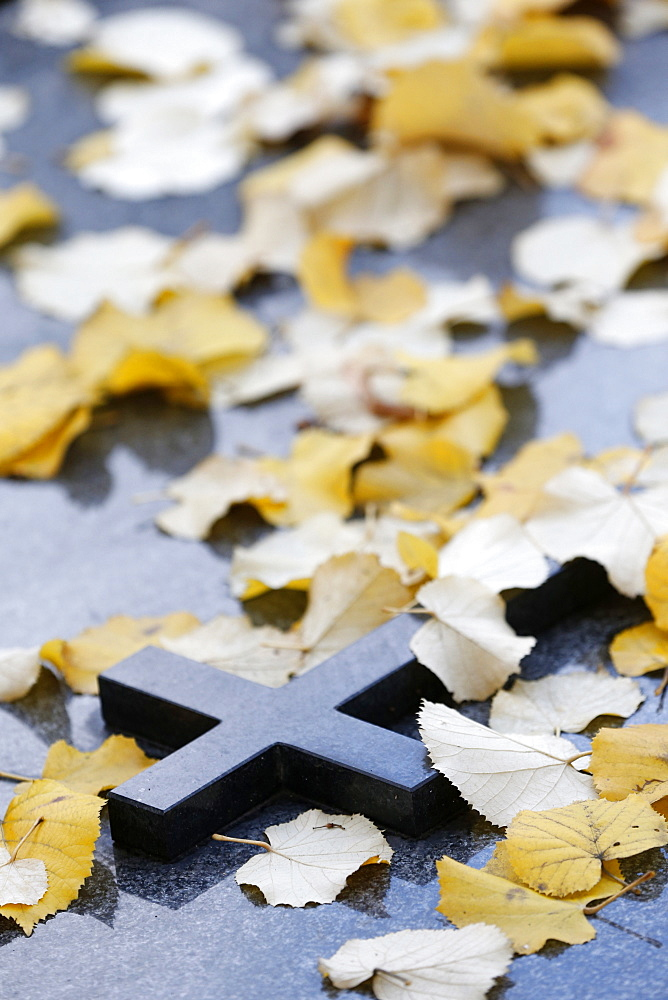 Cross on tombstone under dead leaves, France, Europe
