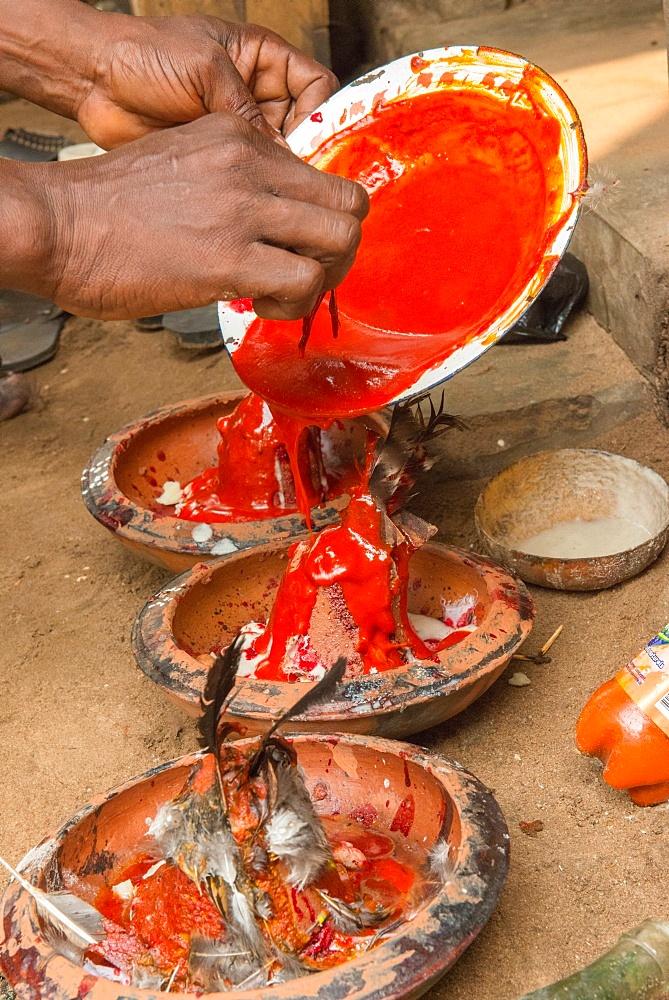 Voodoo ritual performed in Ouidah, Benin, West Africa, Africa