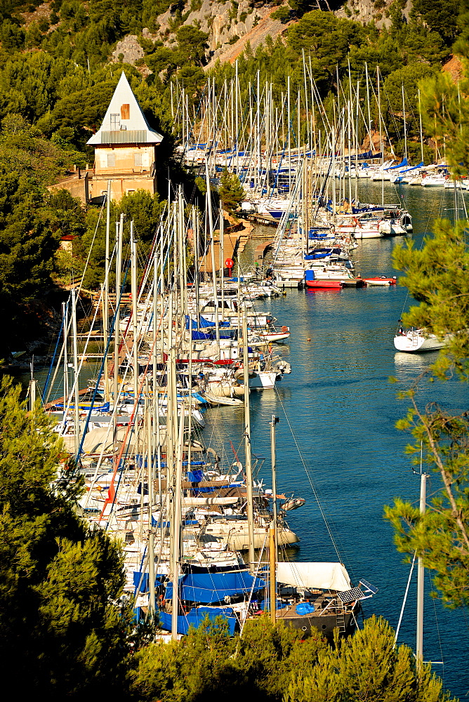 Port-Miou marina, Cassis, Bouches du Rhone, Provence, France, Europe