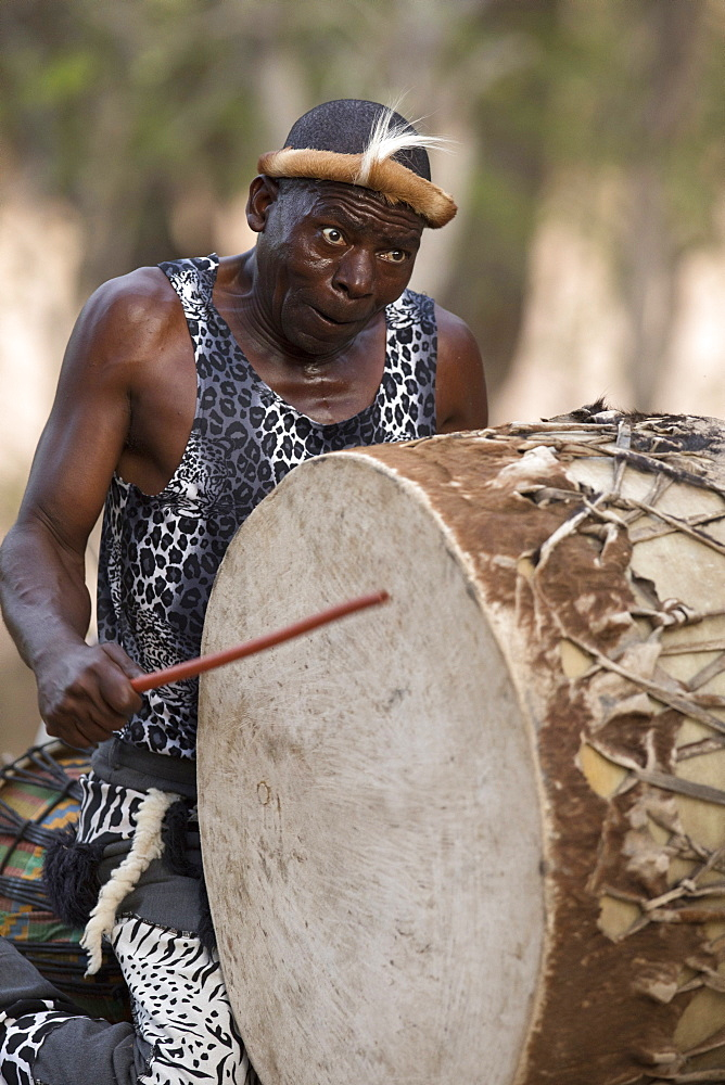 African traditional djembe drummer, Kruger National Park, South-Africa, Africa - 809-7599