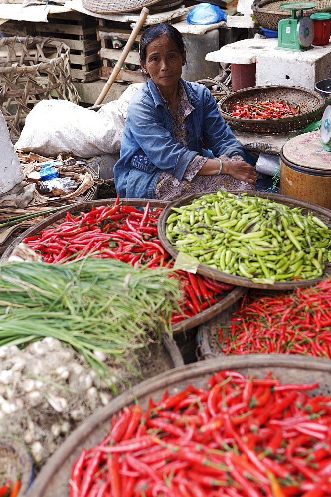 Trader selling chillies at the Dong Ba Market, Hue, Vietnam,, Indochina, Southeast Asia, Asia - 812-196