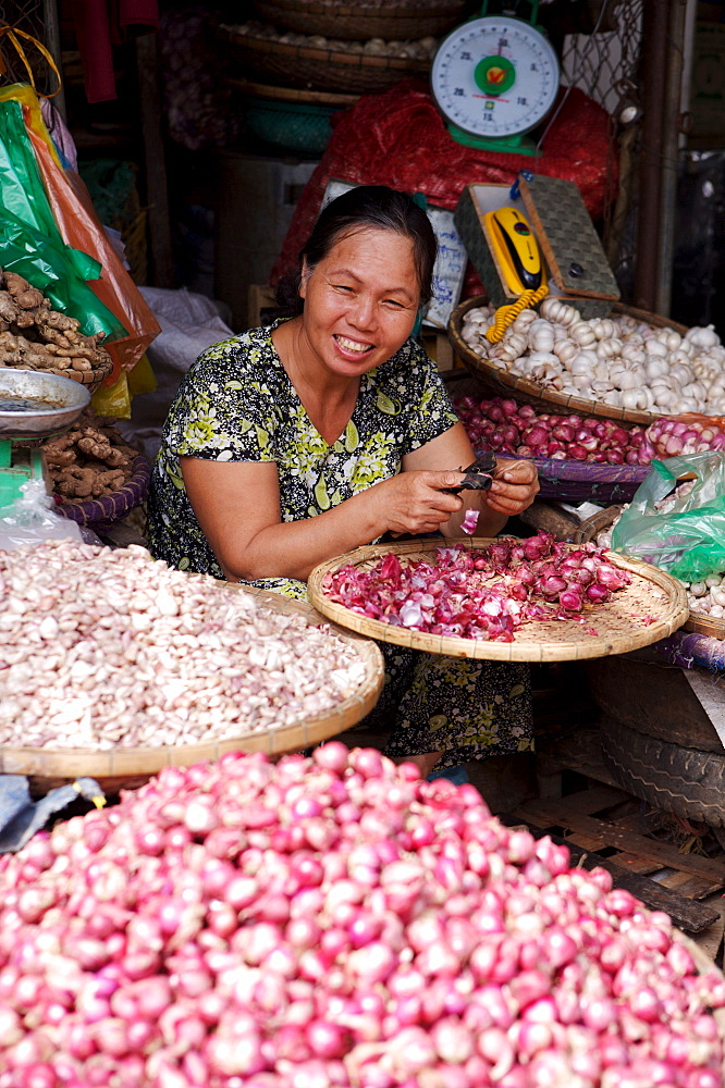 Stall holder selling garlic at the Dong Ba Market, Hue, Vietnam, Indochina, Southeast Asia, Asia - 812-203