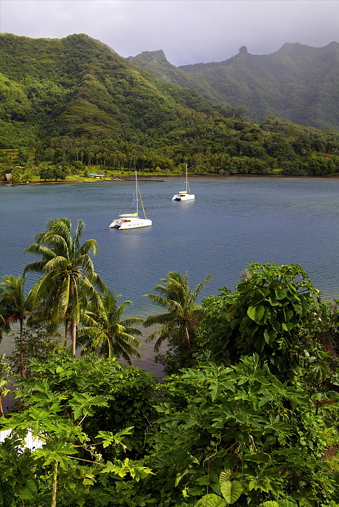 A cruise catamaran in the bay of Hamanee in Tahaa, French Polynesia, Pacific Islands, Pacific - 814-1499
