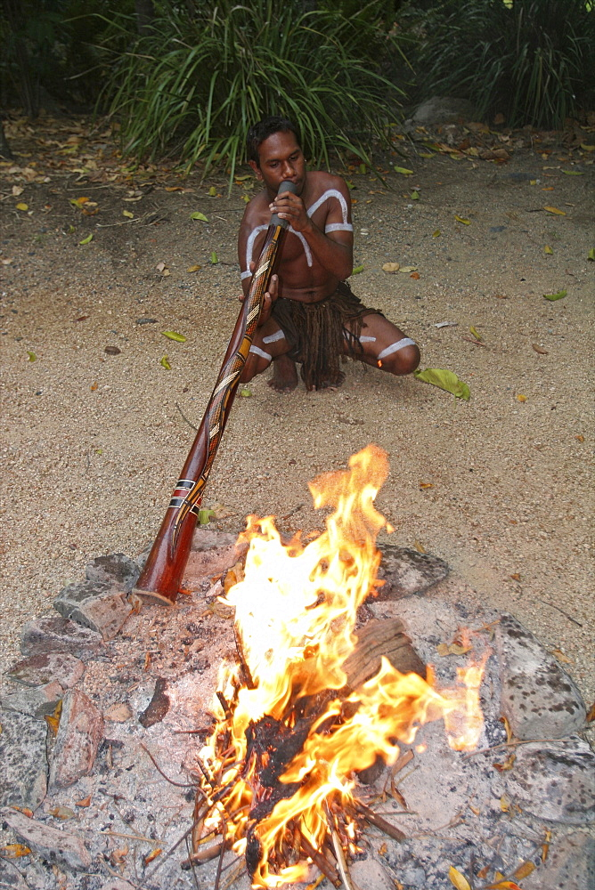 An Aboriginal musician with his digeridoo in a music festival in Cairns, Queensland, Australia, Pacific