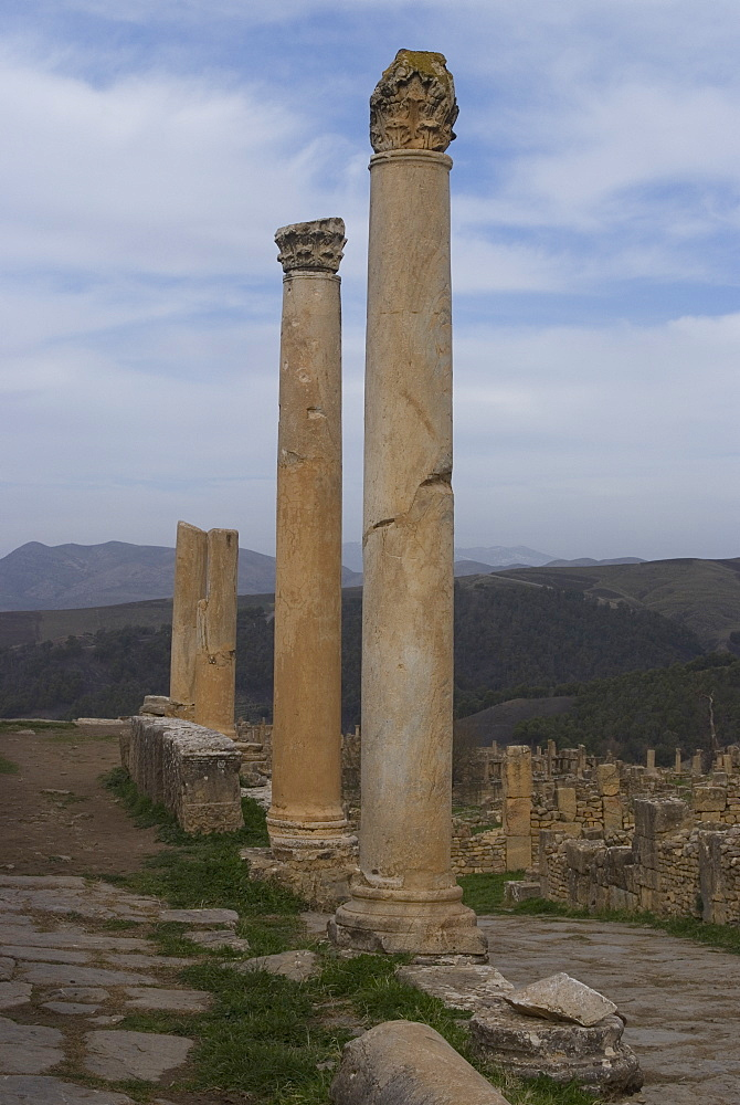 Cardo (main street), Roman site of Djemila, UNESCO World Heritage Site, Algeria, North Africa, Africa