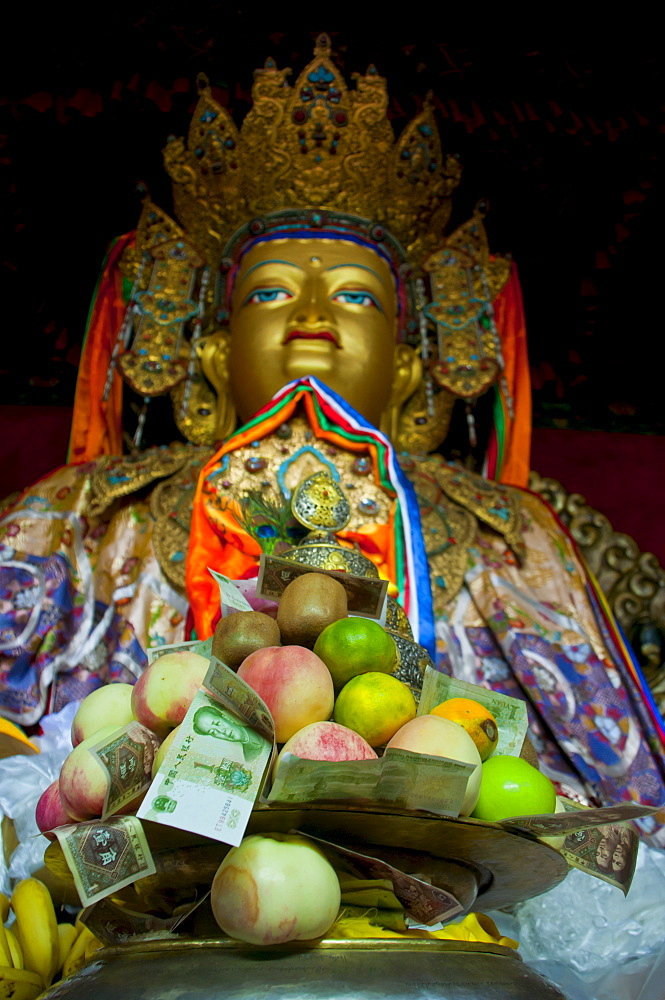 Buddha with sacrifical offerings in a little temple in Lhasa, Tibet, China, Asia