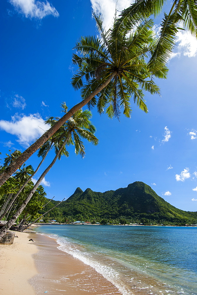 National Park of American Samoa, Tutuila Island, American Samoa, South Pacific, Pacific