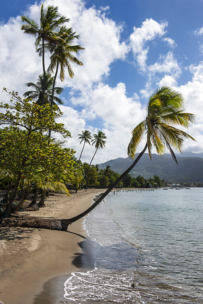 Beach in Prince Rupert Bay, Dominica, West Indies, Caribbean, Central America