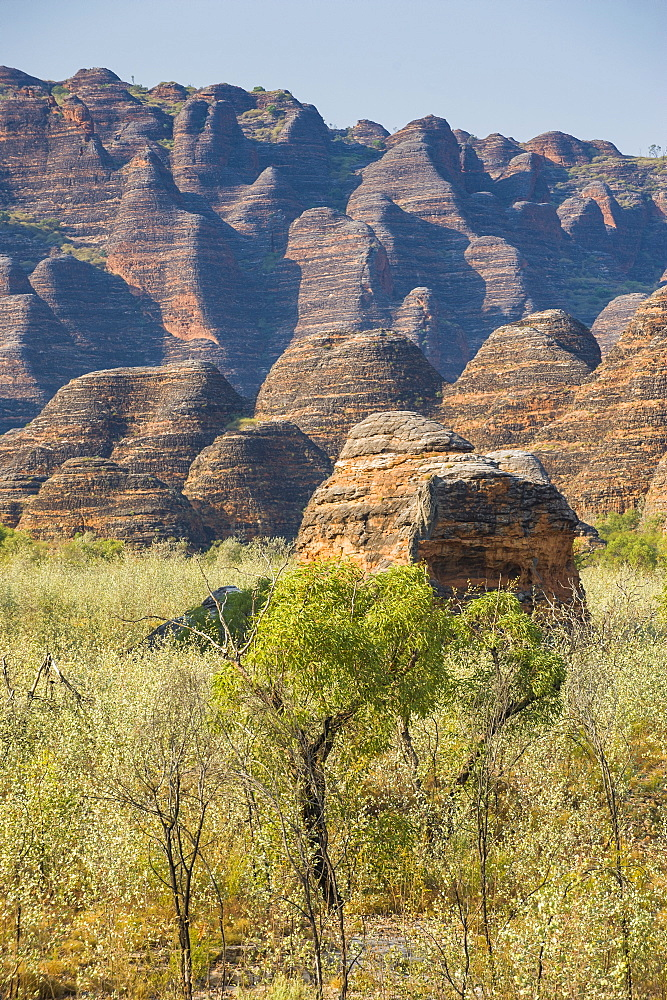 The beehive-like mounds in the Purnululu National Park, UNESCO World Heritage Site, Bungle Bungle Mountain Range, Western Australia, Australia, Pacific