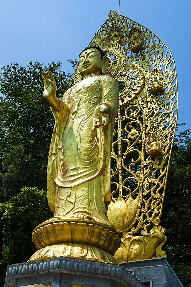Golden Buddha in the fortress of Suwon, UNESCO World Heritage Site, South Korea, Asia