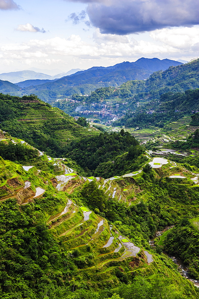 The rice terraces of Banaue, UNESCO World Heritage Site, Northern Luzon, Philippines, Southeast Asia, Asia