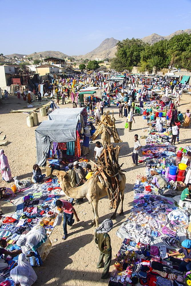Loaded camel walking through  the colourful Monday market of Keren, Eritrea, Africa