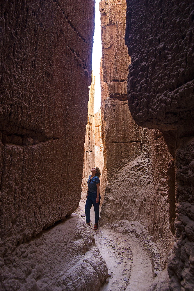 Woman standing in the sandstone chimneys in the Cathedral Gorge State Park, Nevada, United States of America, North America