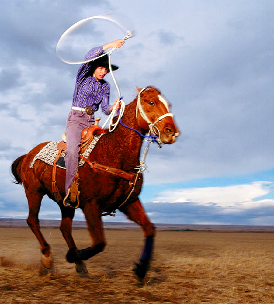 Teenage girl rodeo champion roping on horseback, Colorado, USA