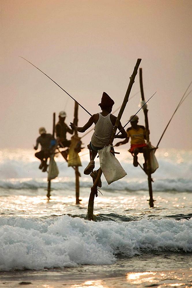 Stilt fishermen, Koggala, Sri Lanka
