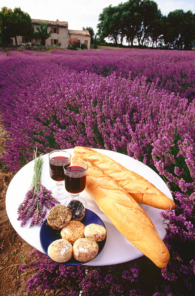 Bread and wine on table, Provence, France