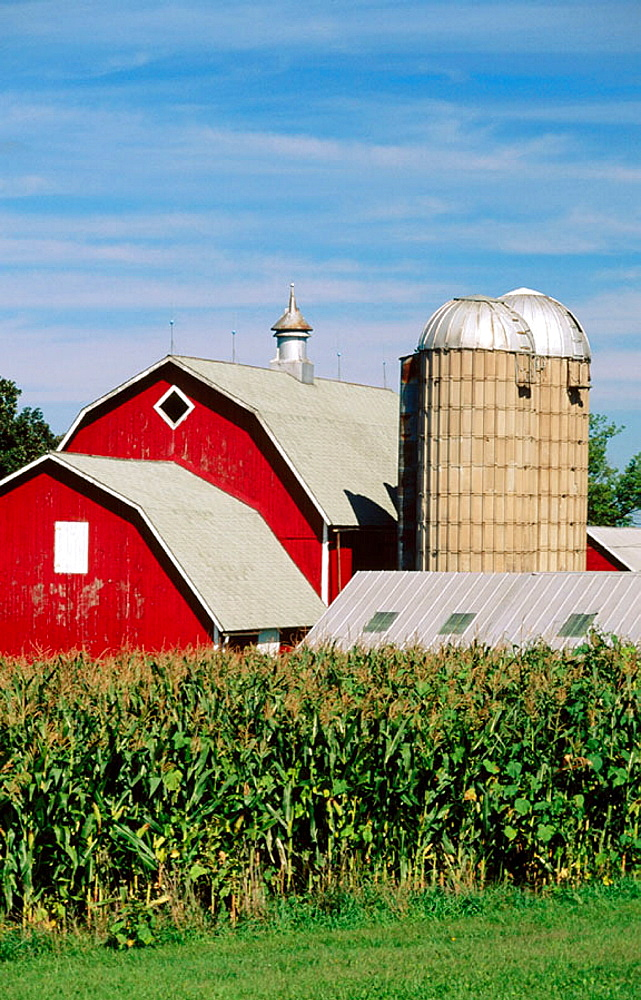 Barn and silo, Eastman, Wisconsin, USA