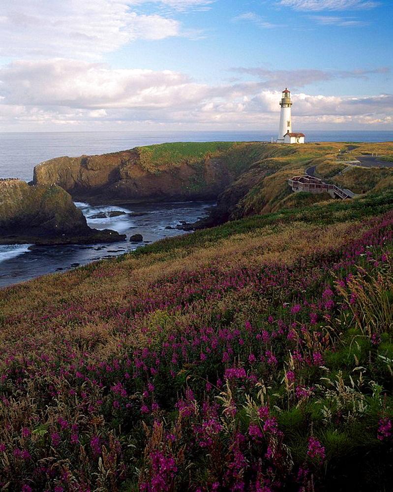 Sunrise on Yaquina Head Lighthouse, Newport, Lincoln County, Oregon, US.A.