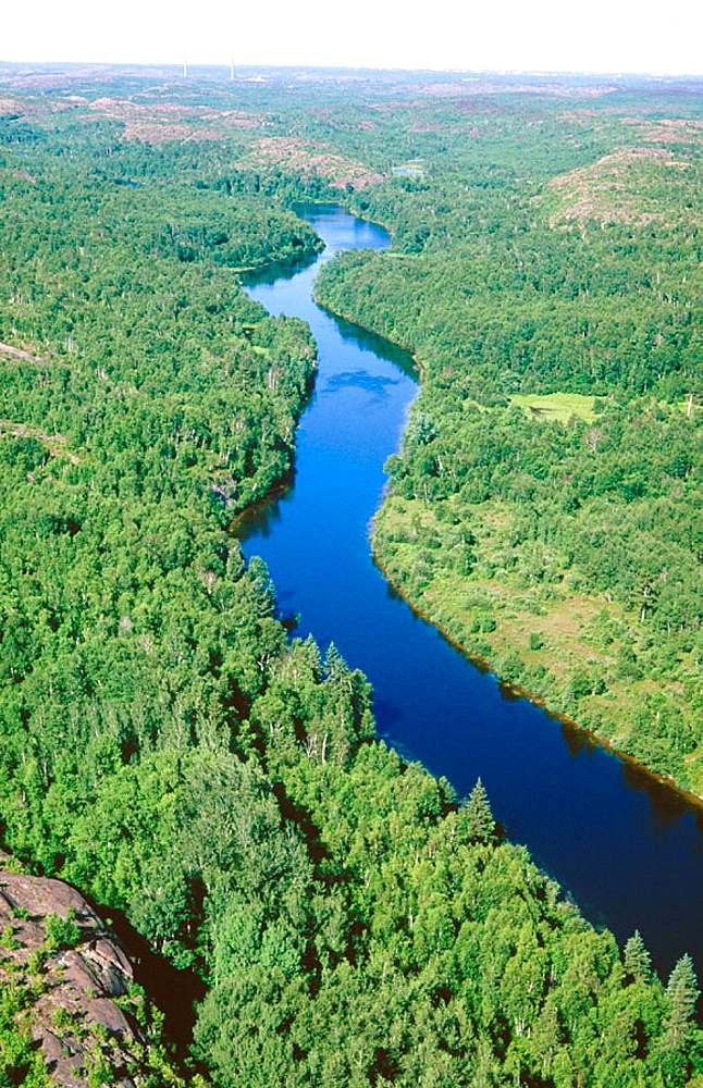 Wanapitae river and regenerated forest in the Wanapitae area, Sudbury, Ontario, Canada