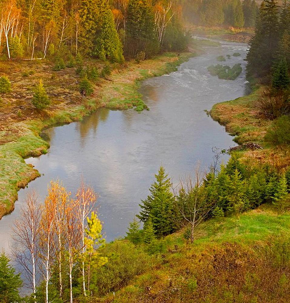 Overlooking Junction Creek in springtime