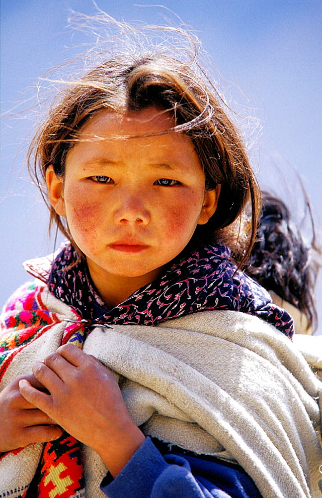 Young Tibetan girl, Himalaya Mountains, India - 817-128624