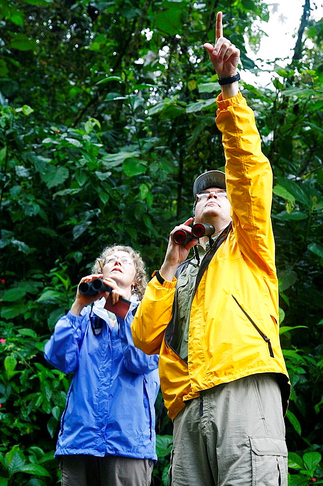 Bird Watchers at the Arenal rainforest, La Fortuna area, Costa Rica