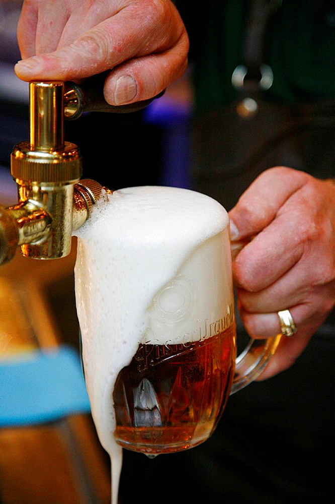 Barman pouring beer at U Vejvodu Beer Hall and restaurant, Stare Mesto, Prague, Czech Republic