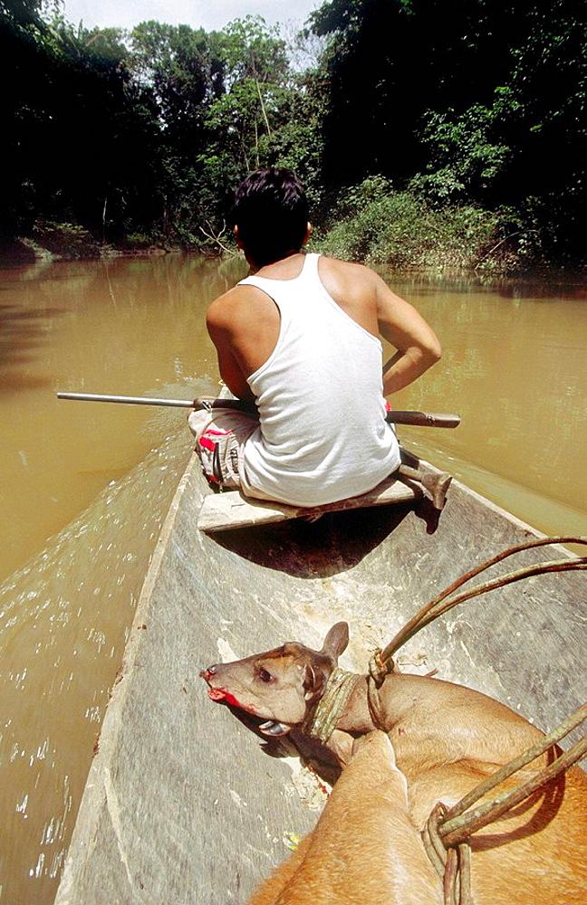 Hunter with killed deer, Chobayacu river, Loreto, Peru